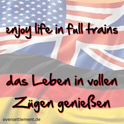 enjoy life in full trains